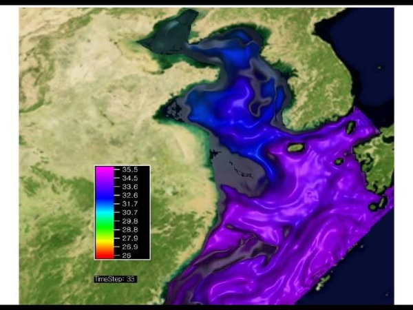 Entry 11 - Temperature, salinity and current distribution on the Korean ambient sea water