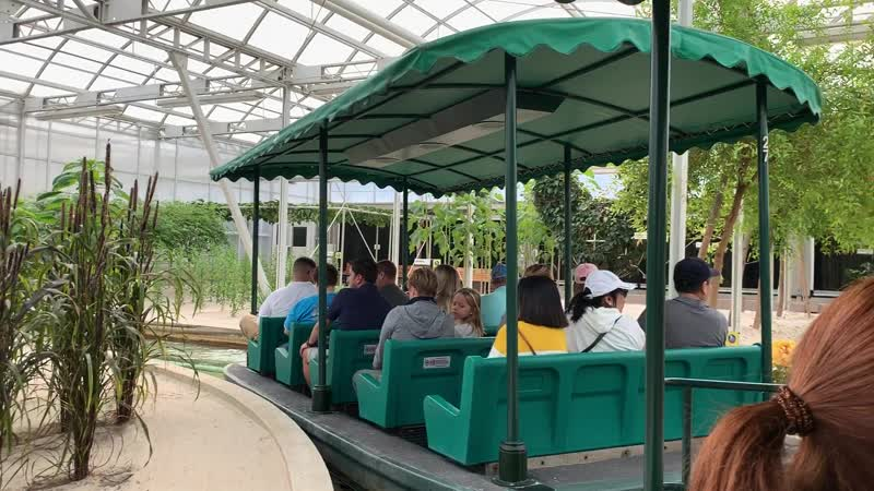Epcot – environmental protection – 3