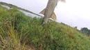Щука монстр откусывает хвост щуке на 2 кг как работают воблеры джакал магсквад 128 и rerange 130sp