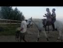 Я с братом на лошади