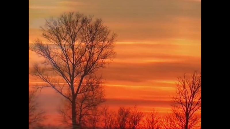 Sunset video compilation
