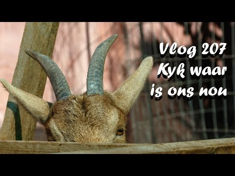 Vlog 207 Kyk waar is ons nou The Daily Vlogger in Afrikaans