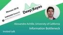 DeepBayes2018 Day 6 Invited talk 4 Information bottleneck