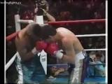 Хулио Сезар Чавес vs Фрэнки Рэндалл (полный бой) [29.01.1994]
