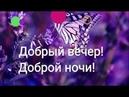 Добрый вечер! Доброй ночи! Красивая музыкальная видео-открытка. Поздравление Поздравляю