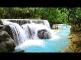 Nature Sounds of a Forest Waterfall &amp Jungle Sounds Singing Birds Ambience