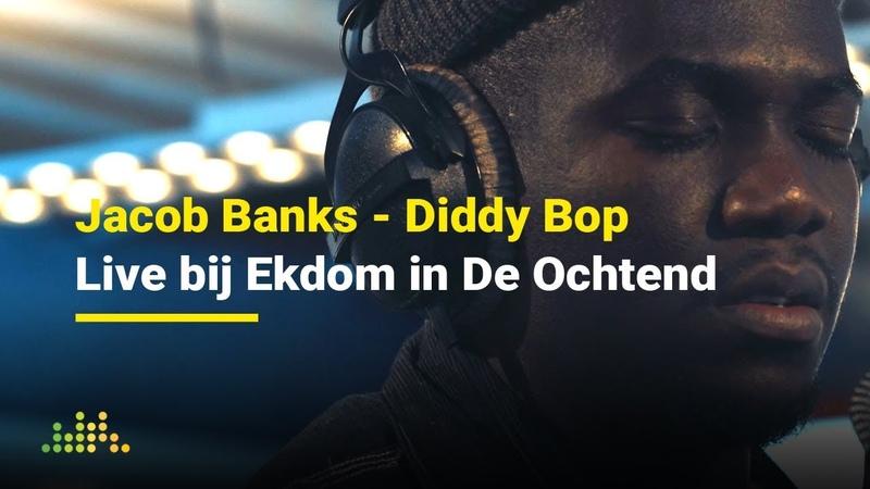 Jacob Banks - Diddy Bop | Live bij Ekdom In De Ochtend