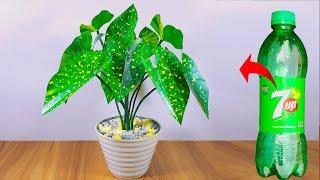 প্লাস্টিক বোতল দিয়ে বাহারি গাছ Plastic bottle artificial plant for home decoration