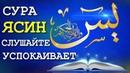 ВКЛЮЧАЙТЕ СУРА ЯСИН для лечения Surah Ya'Seen for cure سورة ياسين