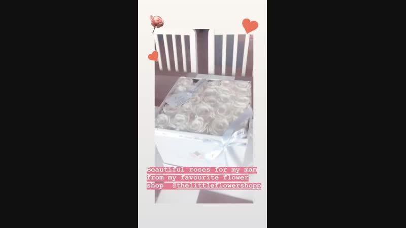 Instagram Stories Jade