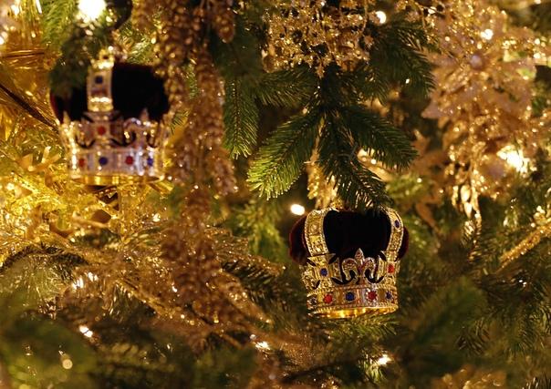 В Виндзорском замке установили огромную елку.