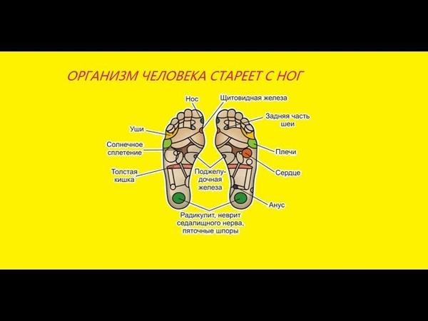 Организм человека стареет с ног. Как замедлить процесс старения.