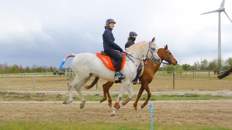Training with ASE Bisiriya Hlayyil