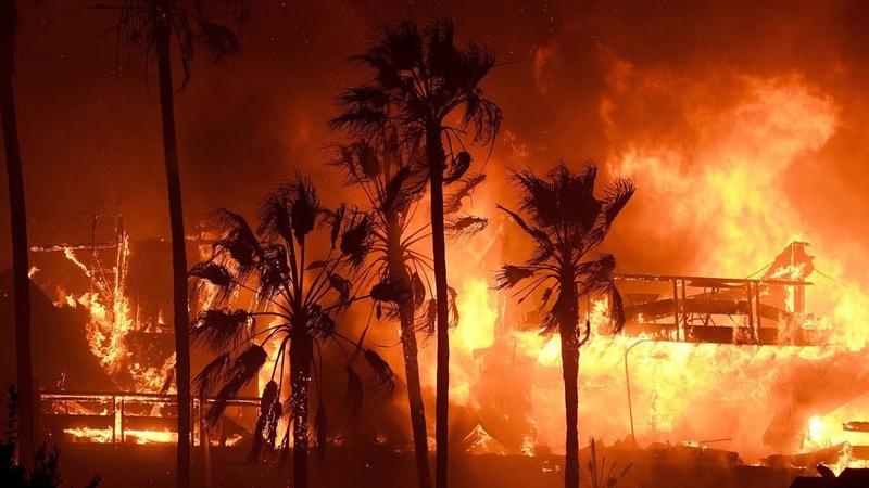 Мир, уничтожаемый по плану. Что стоит за пожарами?