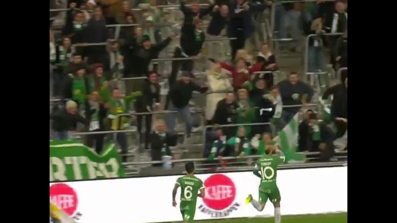 Jogador sueco comemora gol bebendo cerveja arremessada pela torcida