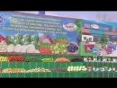 Новости Телевидения Туркменистана 24.03.2018 .mp4