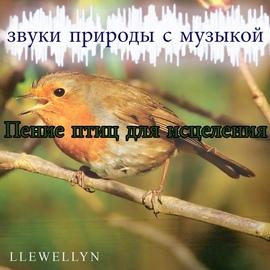 Llewellyn альбом Пение птиц для исцеления: звуки природы с музыкой