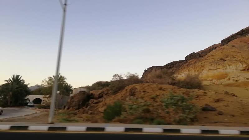 По Синайскому полуострову