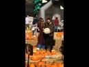 13.10.2018 - Том с Хайди и её детьми, тыквенный огород Mr. Bones Pumpkin Patch, Калвер-Сити (Калифорния, США)
