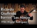 Barrios' 'Las Abejas' played by Ricardo Giuffrida