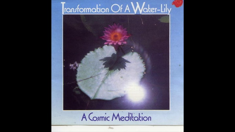 Michael Wehr - Transformation of a Water-Lily - A Cosmic Meditation (1988) FULL ALBUM