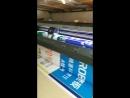 Solvent printer Konica 512i print head