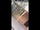 д.Рамадановка баня 5х3 м из проф.бруса банитут баниюгарб