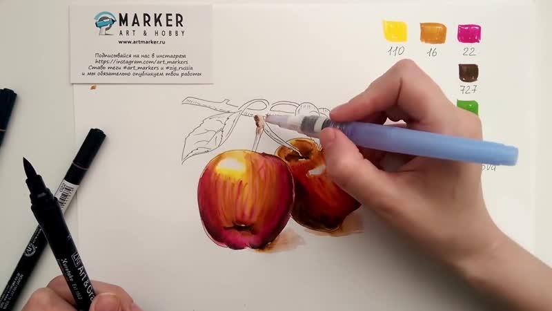 Уроки рисования акварельными маркерами - Рисуем реалистичные яблоки акварелью