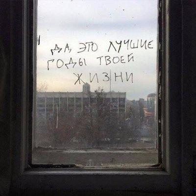 Дина Качуровская