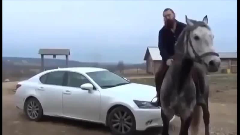 Автомобиль убивает нас