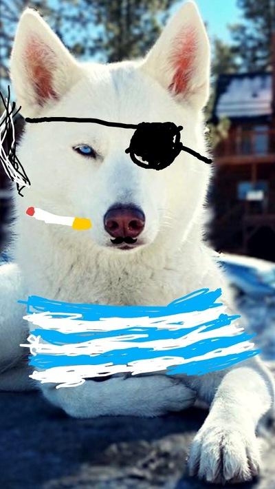 Сережка Бейдин