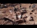 7 сокрушительных провалов палеонтологии Ложь и фейки науки Разоблачение учёных и научного обмана