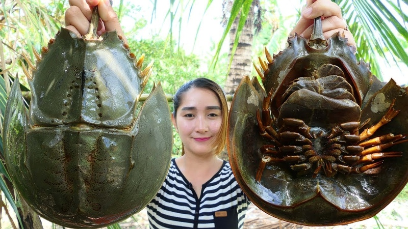 Yummy Horseshoe Crab Salad Cooking Horseshoe Crab Cooking Cooking With Sros