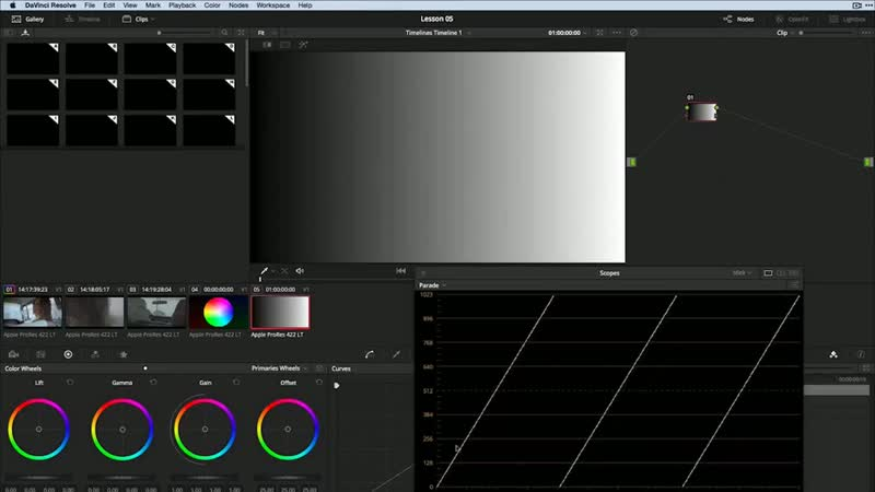 Digital Tutors - Introduction to Color Grading in DaVinci Resolve