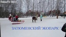 ЗАТЮМЕНСКИЙ ЭКОПАРК Зимние забавы Тюмень