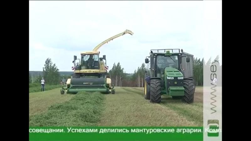 В приоритете у курских аграриев — производство молока и говядины