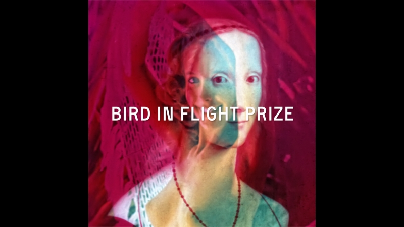 Жюри Bird in Flight Prize'18