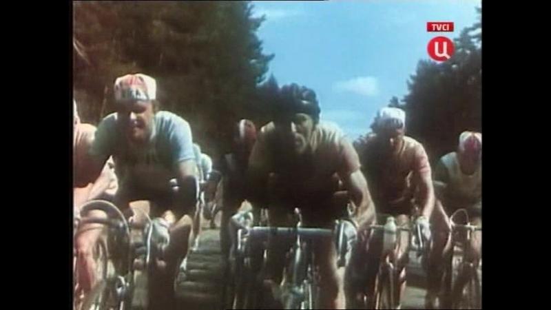 Укротители велосипедов