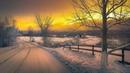 Картинка зима. Дорога, деревья, холод. Billede vinter, vej, træer, koldt