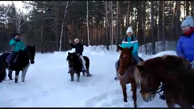 Конная прогулка по зимнему утреннему лесу в Сивка Бурке