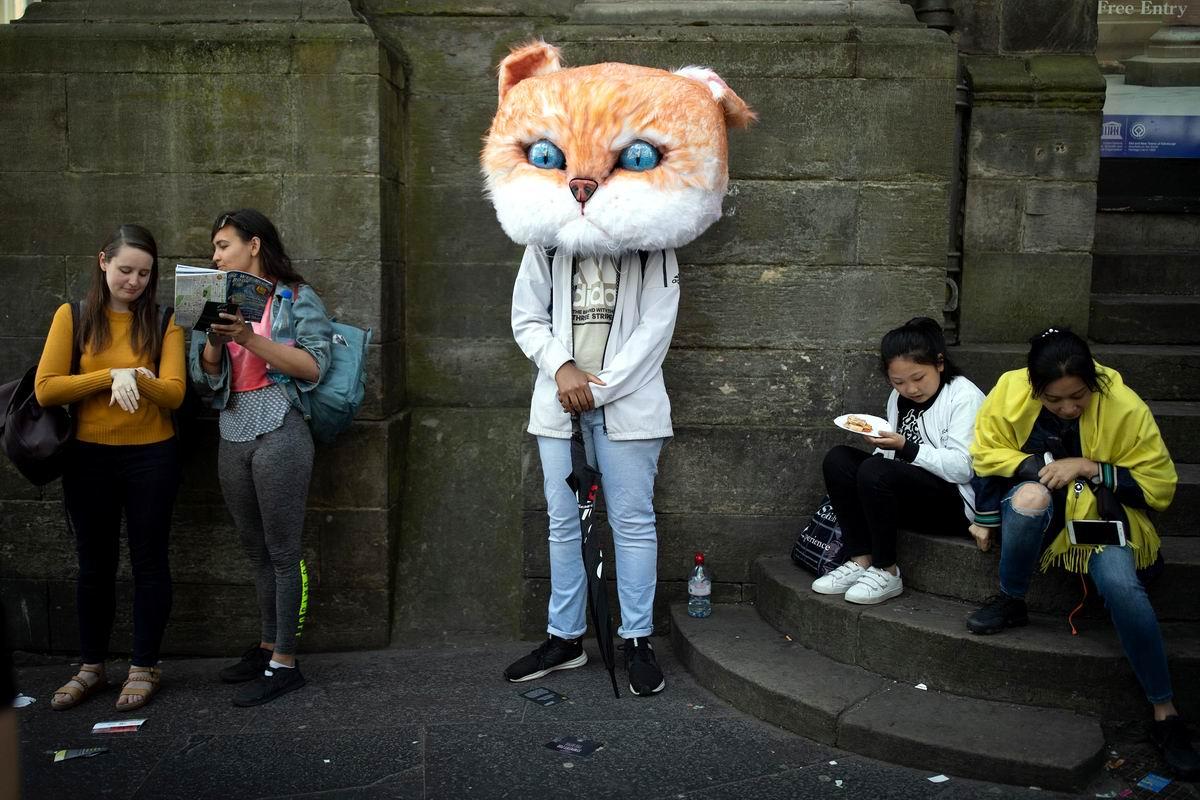 Ну почему меня никто не хочет приголубить?: Занятые девушки и очень грустный котик