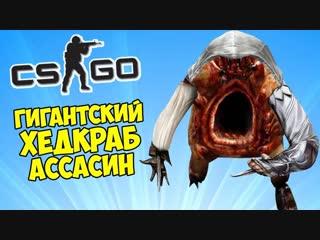 Muxakep Михакер 🗡️ ГИГАНТСКИЙ ХЕДКРАБ АССАСИН - CS_GO Прятки (КС ГО Маньяк)