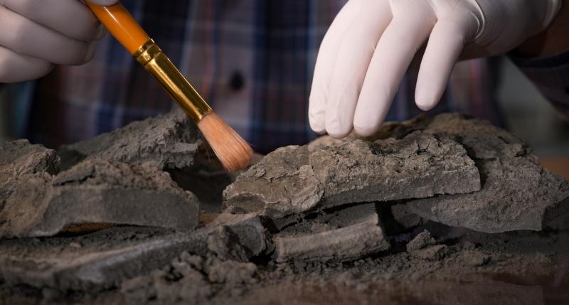 Древний склеп знатного сановника нашли в Зеленчукском районе