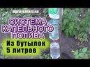 Система капельного полива Своими Руками из 3 х бутылок по 5 литров