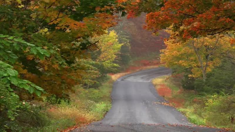 Дорога в осень. Раймонд Паулс. (Музыка из к_ф Двойной капкан)