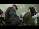 Голодомор вернулся! В киевском метро бабуля пыталась загрызть котенка