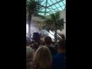 Концерт в Рио