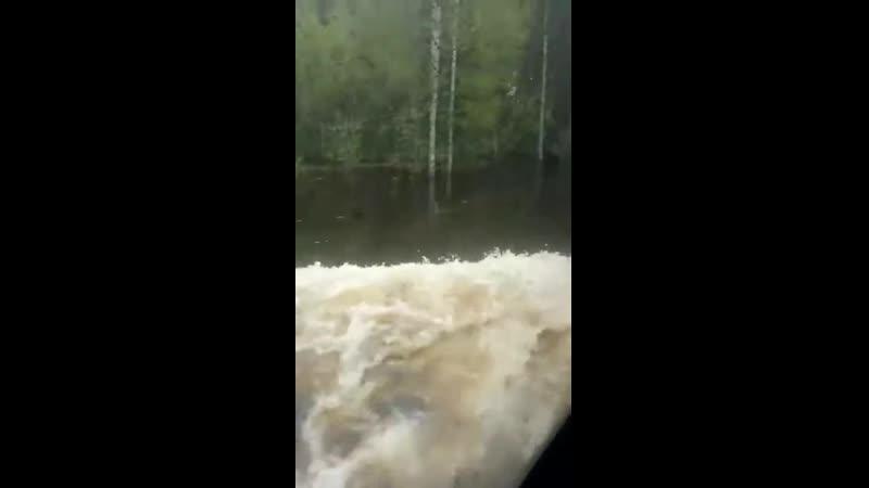 В Сыктывкаре водитель автобуса преодолевая затопленную дорогу решил подбодрить пассажиров песней из Титаника