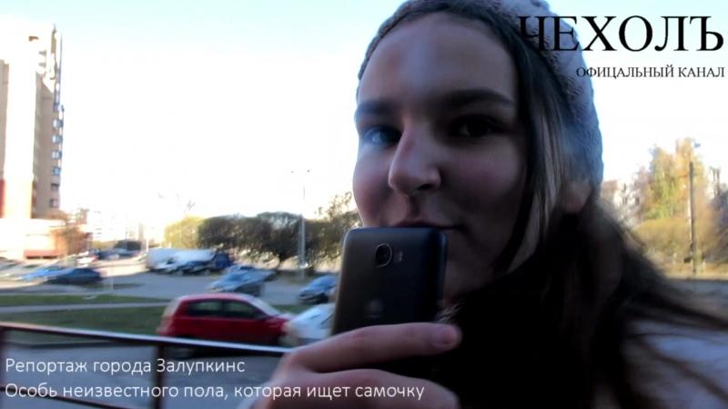 репортаж города Залупкинс (офицальный канал ЧЕХОЛЪ)