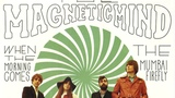 The Magnetic Mind - The Mumbai Firefly Heavy Soul 2014 Psychedelic Rock 45
